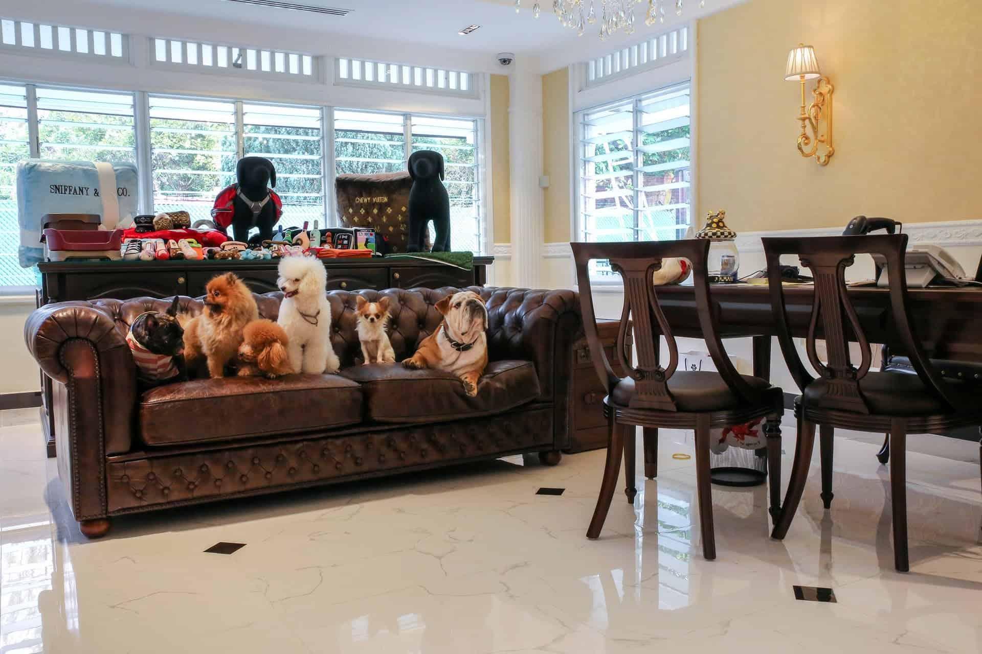 Cách thu hút khách hàng gia đình đến với khách sạn của bạn