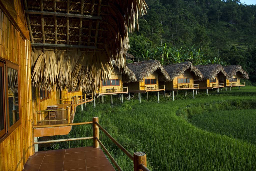 Hoang Su Phi Lodge nằm giữa những thửa ruộng bậc thang và rừng núi Tây Bắc