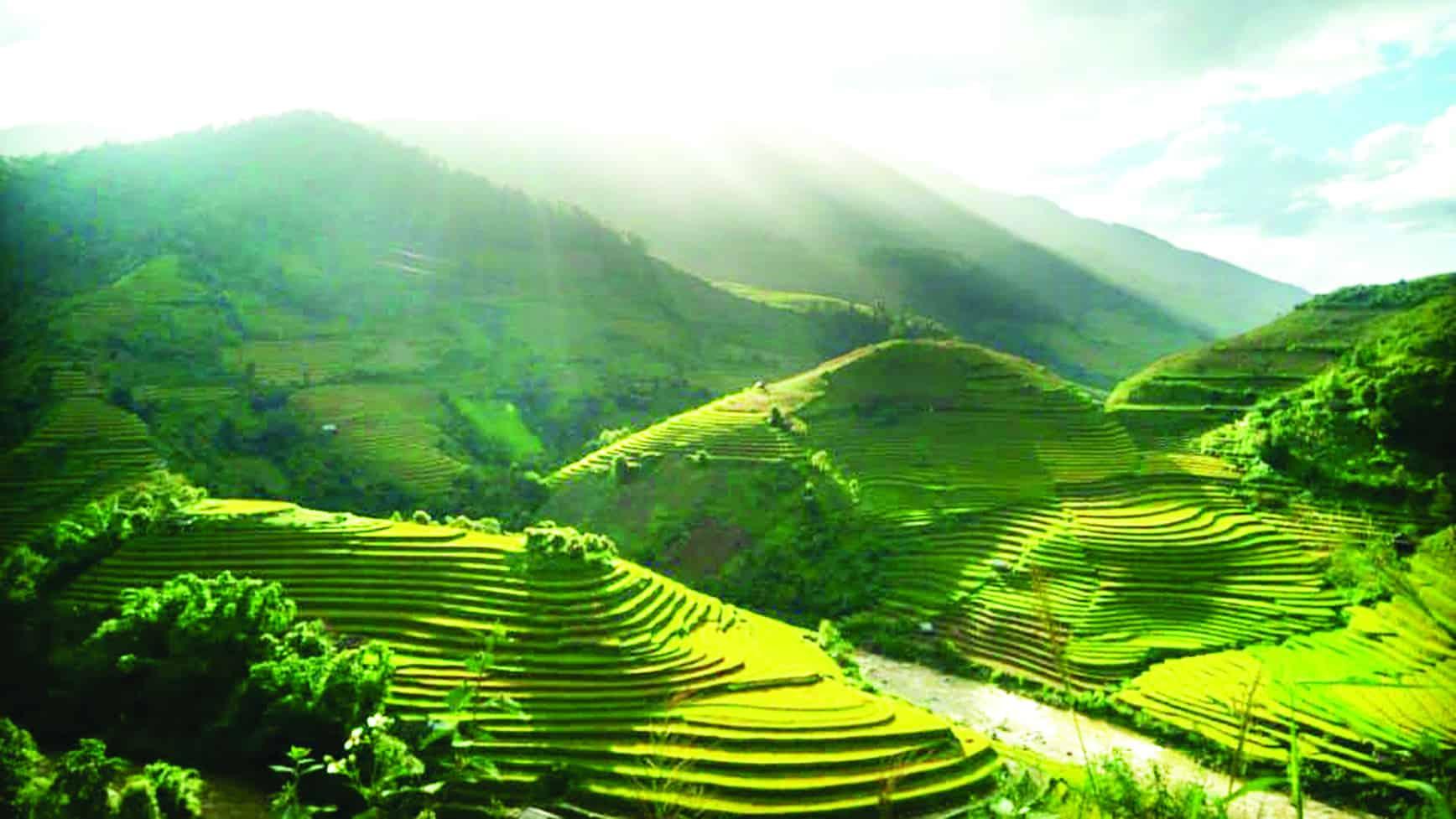 Đèo Khau Phạ - Kinh nghiệm du lịch Mù Căng Chải mùa lúa chín